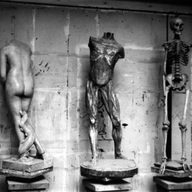Tre anatomiska modeller, Konstfackskolan (1953)