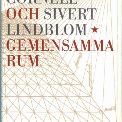 """<a href=""""http://sivertlindblom.se/biografi/egna-texter/citat-ur-★-gemensamma-rum-av-peter-cornell-och-sivert-lindblom-1998/"""" rel=""""noopener"""" target=""""_blank"""">Utdrag ur boken</a>"""