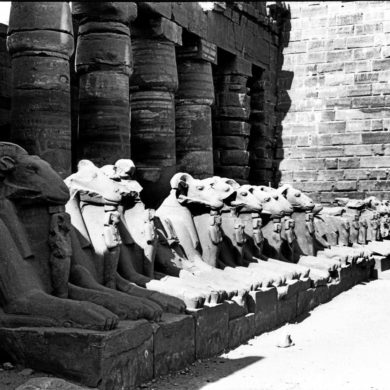 Vädurs-sfinxar som allé till Amon-Res tempel, Karnak, Egypten