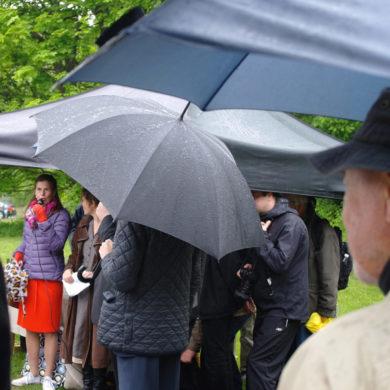 Vid mikrofonen Märtha Angert Lilliestråle, dåvarande ordförande i Haga Brunnsvikens vänner Foto: Jan Öqvist